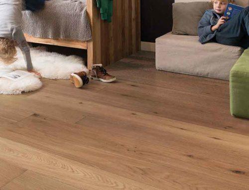 ¿Puedo tener plagas en mis pisos de madera?